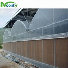 Plastic Film Cover Multi-span greenhouse