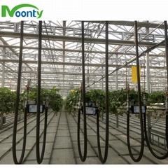 Auto Strawberry Greenhouse Hydroponics Growing System