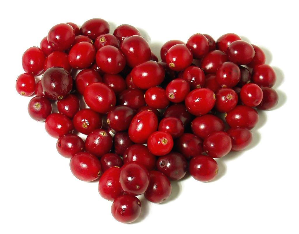 Cranberry P.E 1