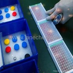 Aflatoxin B1 albumin adduct  ELISA Test Kit
