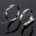 Cheaper Steel Twist Tie