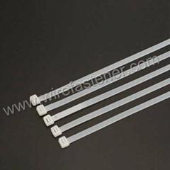 Yueqing Nylon 66 Wire Fastener