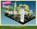液化石油气压缩机 1
