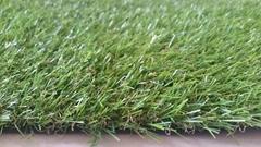 Grass Roll 1x3M