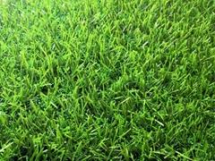 All Green Grass 26mm