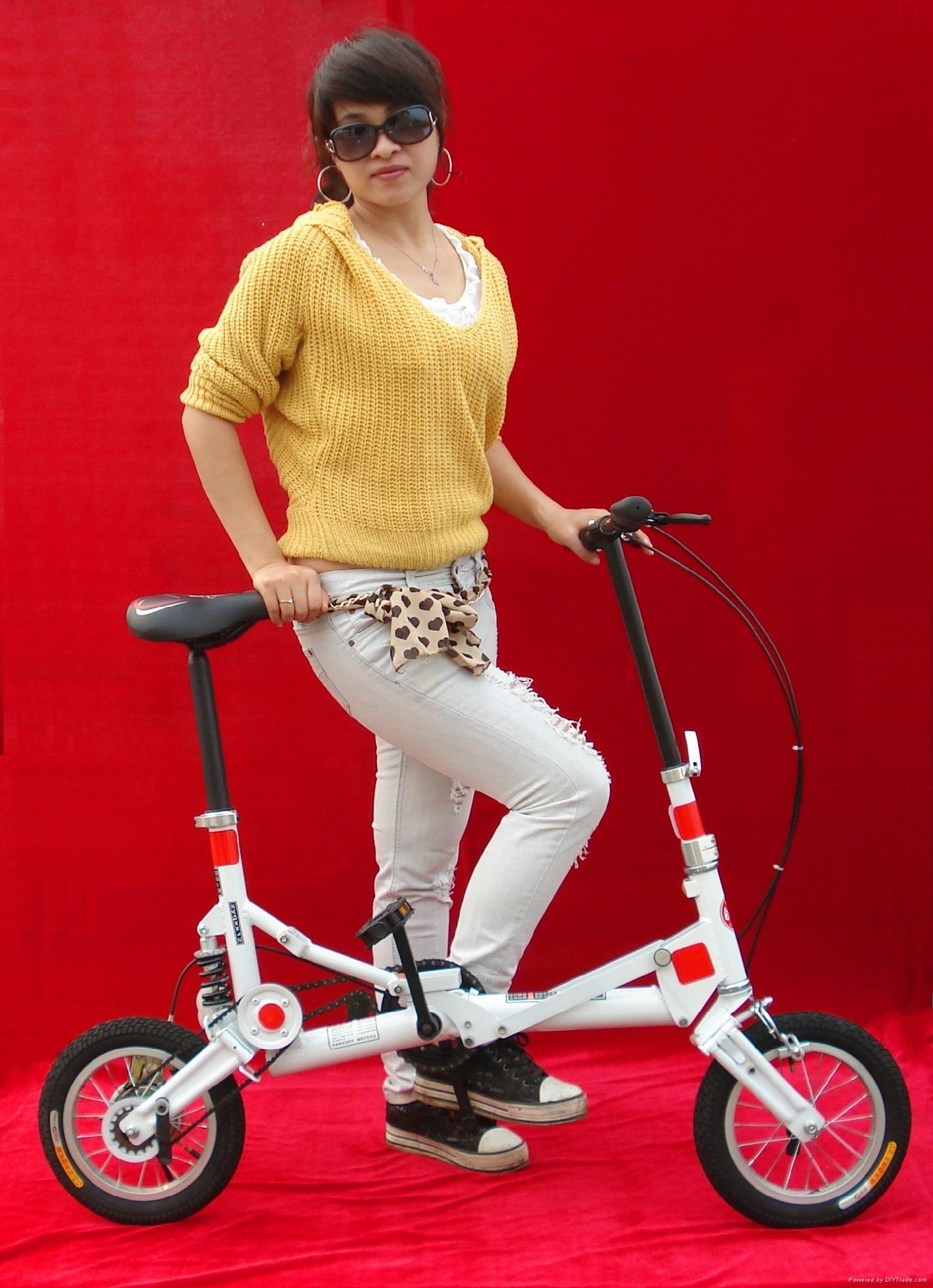 折叠电动自行车 5