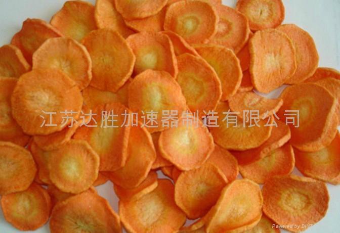 辐照脱水胡萝卜食品 1