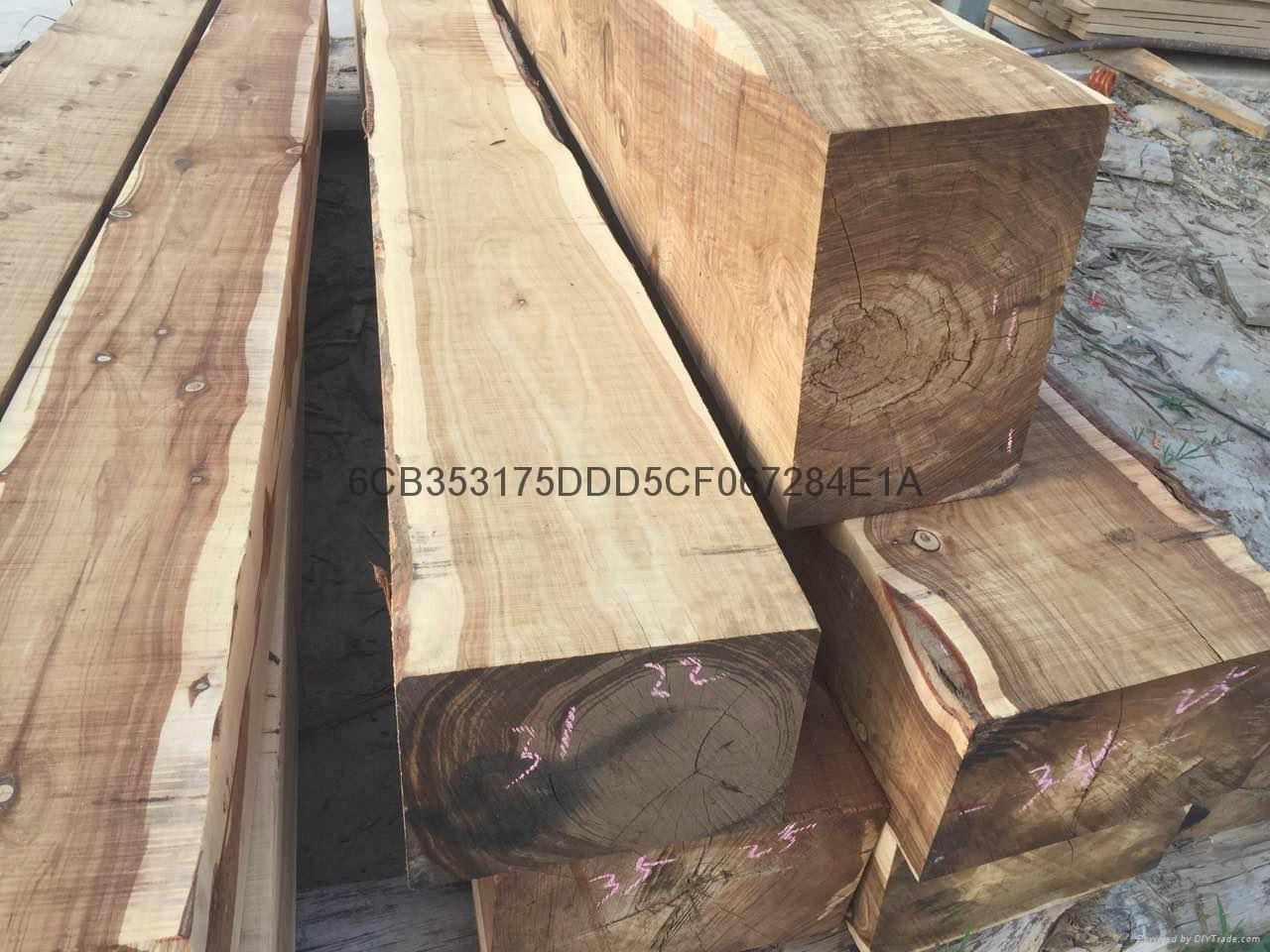 油柏原木精板 2