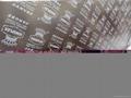 KINGPLEX BRAND FILM FACED PLYWOOD marine plywood