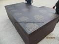CROWN brand film faced plywood building construction wood