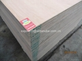 Commercial plywood with Kingdo brand