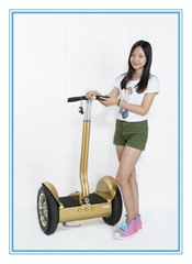 China new product 2 wheel electric scooter electric green power