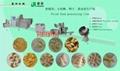 油炸膨化小食品生产线 3