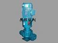 BRY立式导热油泵