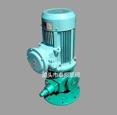 YHB-LY立式圆弧齿轮泵系列 1