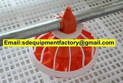 SD automatic chicken feeder