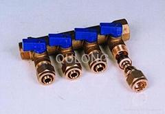 brass manifold