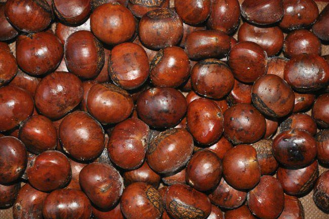 Quick Freezing Roasted Chestnuts in shell 5