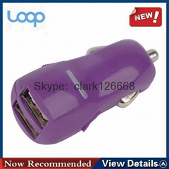 3.1A private mold dual port usb car charger