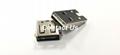 全球   雙向USB 3.1