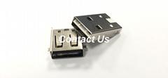 全球   雙向USB 3.1 A Type 公頭