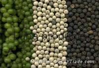 Fresh Okra,Black Peper,frozen Green Beans 3