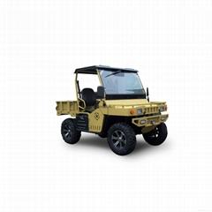 800cc 4x4 UTV with CVT for dealership