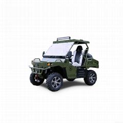 UTV 800cc 4x4 Gasoline CVT for sale