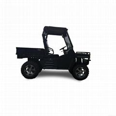 1200cc CVT diesel UTV for sale