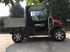 2 seater electric golf cart with cargo box made in china