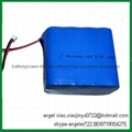 6V 1.5AH lifepo4 battery solar lamp battery 2