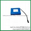 36v 24ah lifepo4 battery for ups storage