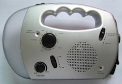 Solar dynamo radio with flashlight
