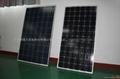 solar panels 170W-180W