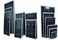 0.1w-300w太陽能電池組件/太陽能板 2