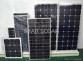 太陽能電池組件50W 6