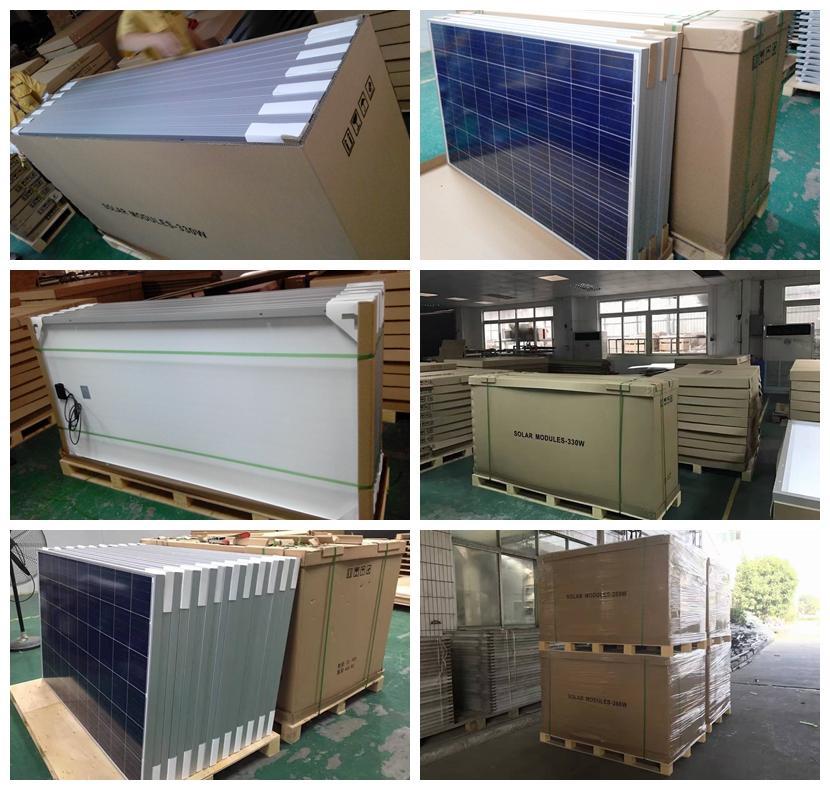 单晶太阳能组件 300W  5
