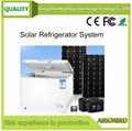 308L solar DC freezer system