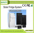 215L solar DC fridge system