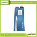 1000W Sine Wave Solar Inverter with UPS