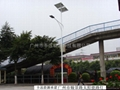 solar street lamp /solar led street lamp