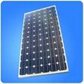太陽能電池組件175W 2