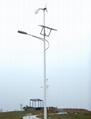 Solar& wind power street lamp
