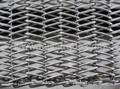 Stainless steel conveyor belt  1