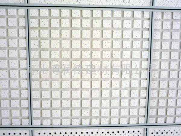 长城冰盒矿棉天花板 2
