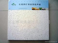 阿姆斯泰毛毛虫天花系列矿棉板