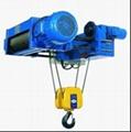Standard European style Electric Hoist