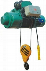 Double Brake Electric Hoist