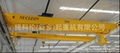 NLH model double girder overhead crane