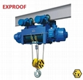 Explosion-proof Electric Hoist